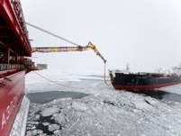 Путин наблюдал за отгрузкой впервые добытой  на арктическом шельфе в Печорском море нефти